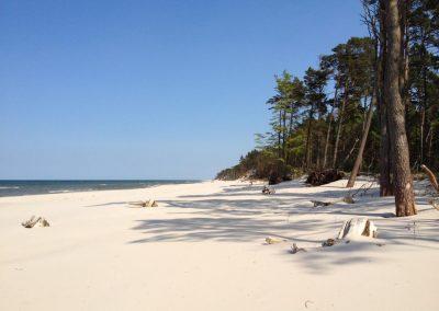 plaża w maju